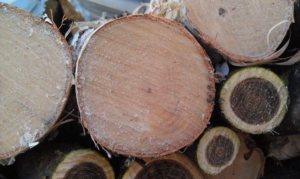 Types de bois