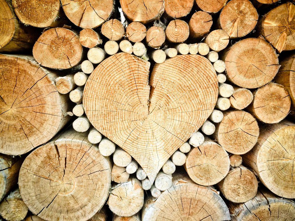 Choisir le bois en fonction de son usage